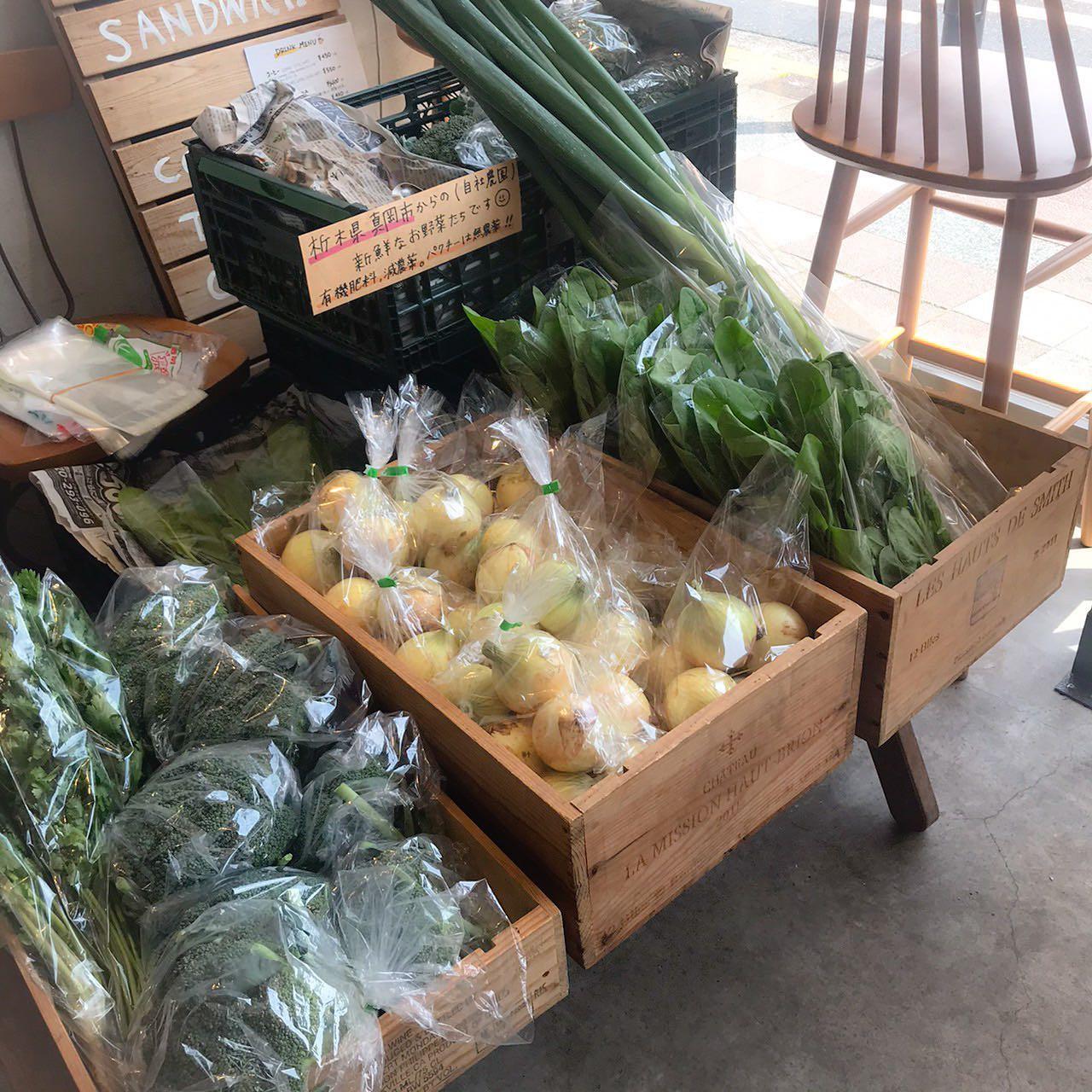 昨日真岡市の畑で収穫したお野菜販売しています減農薬、有機肥料で育てたお野菜です🥬・新玉ねぎ・ねぎ・ほうれん草・ブロッコリー・パクチー(無農薬)新鮮なうちに皆さんにお届けできますように
